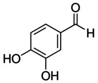 3,4-Dihydroxybenzaldehyde