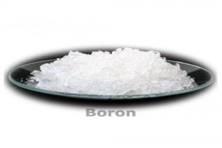 Boran 20%