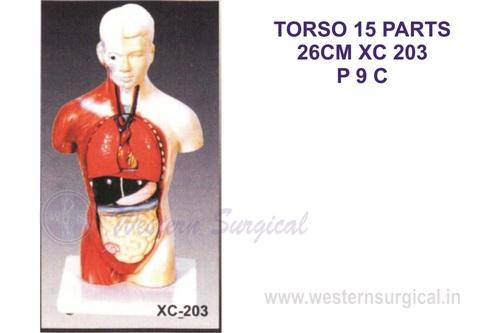Torso 15 parts 26 CM
