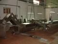 Gherkin Bulk line Processing Machinery
