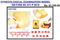 Model of gynecological examination