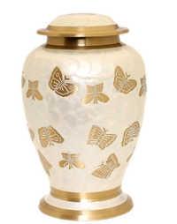Pearl Butterfly
