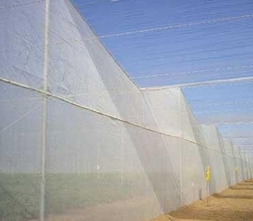 Insect UV Agriculture Net Fabrics