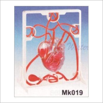 Pumping Heart (MK 019)
