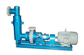 Self Priming Chamber Type Pumps