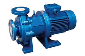Sealless Magnetic Driven Pump