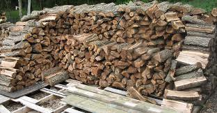 High Quality Kiln Dried Beech Firewood,Oak Firewood,Pine Firewood for sale