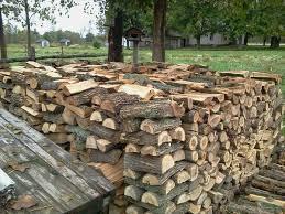 Kiln dried Ash/Oak/Birch/Hornbeam firewood