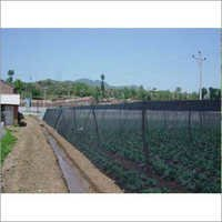 Green Shade Net House