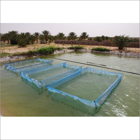 Fish Breeding Net