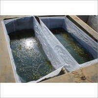 Fish Breeding Happa Net
