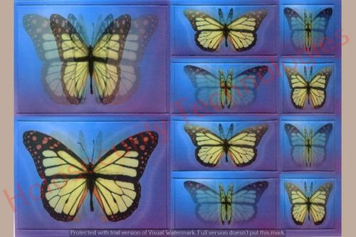 Lenticular Holograms