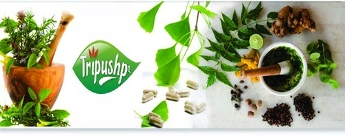 FRANCHISE OF HERBAL COMPANY