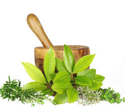 Herbal PCD Franchise Company