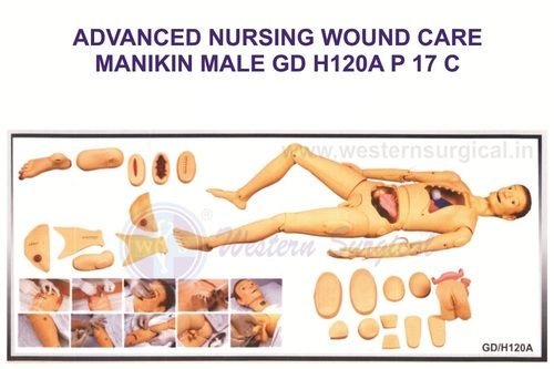Advanced Nursing & Wound Care Manikin(Male)