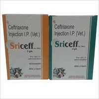 Ceftriaxone Veterinary Injection IP