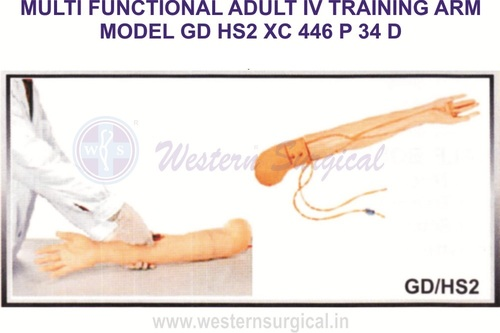 Multi Functional I.V. Training Arm