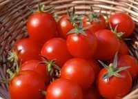 Tomato Vegetable