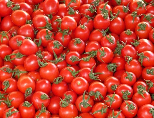 Fresh Tomato Vegetable