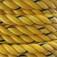 PP Danline Ropes