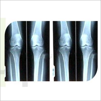 X Ray Viewer Panel