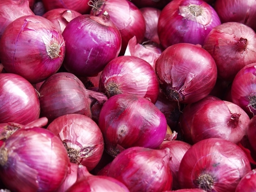 Fresh Red Indian Onion