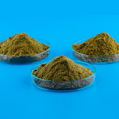 Steam Dried Fish Meal
