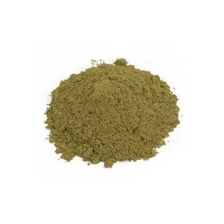 Basil Leaves Powder
