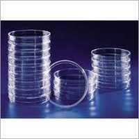 Petri Dish Plastic Sterile
