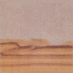 Desertcamel Sandstone