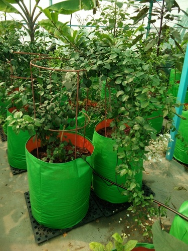 HDPE Plant Grow Bags (Green & Orange)