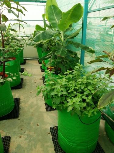 HDPE Garden Grow Bags