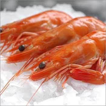 Frozen Vannamei Shrimp Cooked Head On Shell