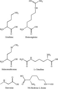 Amino Acid Standard