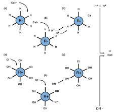 Anions in Water - Low Level