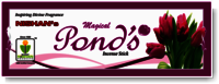 Pond's Incense Sticks