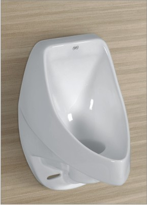 Urinal and Trap