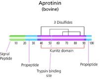 Aprotinin solution