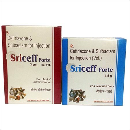 Ceftriaxone and Sulbactam for Veterinary Injection