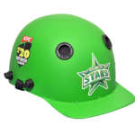 Customised Cricket Helmet