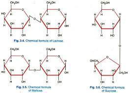 Base/Neutrals Compounds 2A - WP