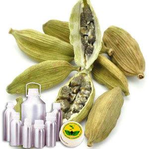 Cardamom Oil Certified Organic