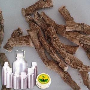 Calmus Oil