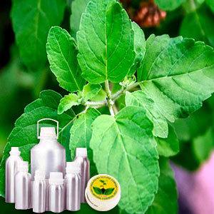Anethole 99.5% Plus (Ex Basil)