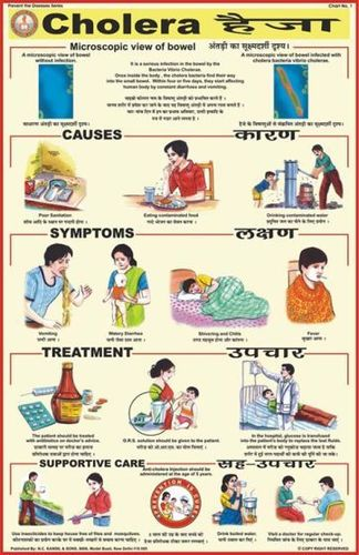 Charts Diseases Cholera