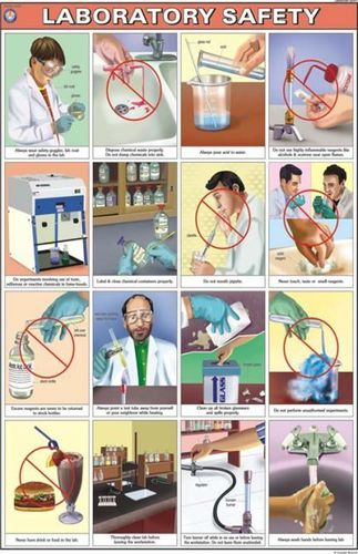 Charts Laboratory Safety