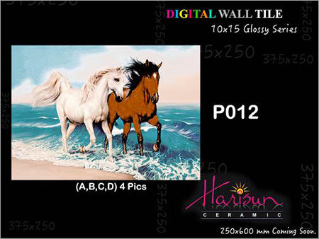 Digitally Printed Wall Tiles