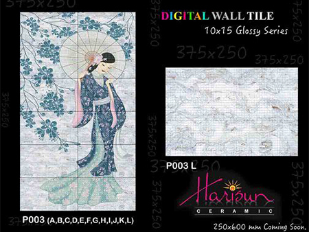 Poster Ceramic Wall Tiles