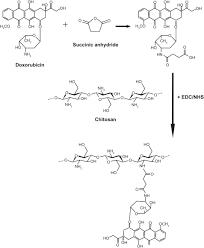 Chitosan hydrochloride B.P.