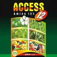 Access 12